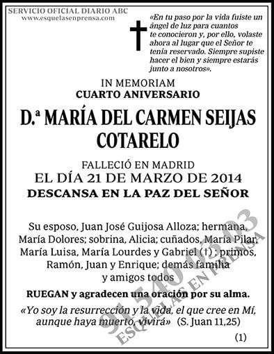María del Carmen Saijas Cotarelo